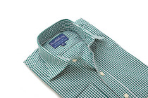 Green Orchard Gingham Regular Collar