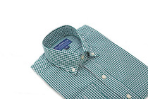 Green Orchard Gingham Slim Collar