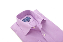 Purple Orchard Gingham Regular Collar