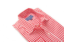 Red Orchard Gingham Regular Collar