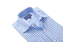 Sky Blue Orchard Gingham Regular Collar